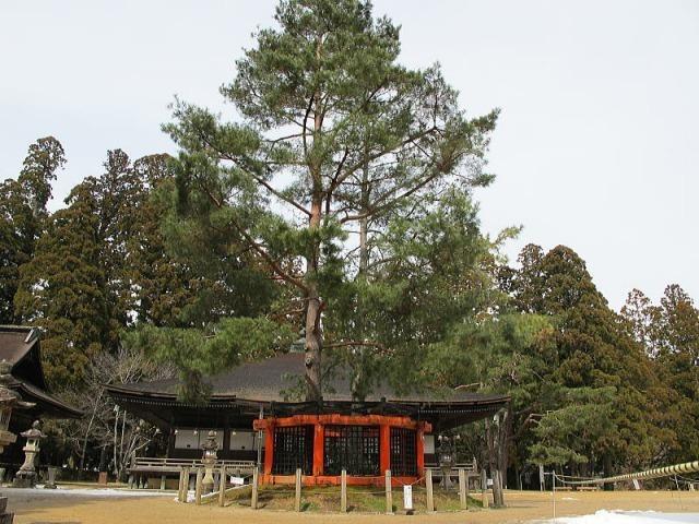s_kouyasan-garan15.jpg